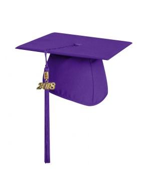 Matte Purple Technical and Vocational Graduation Cap with Tassel